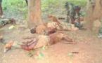 Centrafrique: L'accord, un feu vert pour un round militaire à Bangui