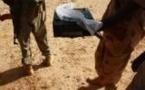 Mali : Les tchadiens qualifiés d'insectes dans le code de transmission des djihadistes
