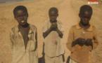Quel bilan pour l'Alliance Sahel après 3 ans au service des populations sahéliennes ?