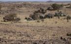 Tchad : Retrait des soldats tchadiens du Mali ? Pas si simple