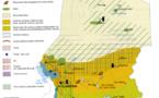 Champion de la croissance économique en zone Franc : Le Tchad !