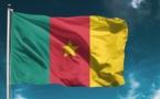 Le drapeau camerounais. © DR