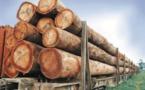 Togo : signature d'un accord d'importation des produits du bois gabonais