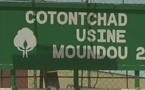 Coton Tchad menace de se mettre en grève si le patron n'est pas libéré avant mercredi