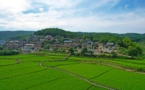 Postgraduate students help vitalize rural areas in SW China's Guizhou province