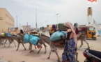 Tchad : la vente du charbon de bois au vu et au su de tous à l'Est