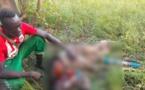 Tchad : un homme égorgé dans son champ après la disparition d'un mouton