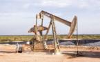 Nigeria : Shell visée par une plainte pour un montant de 2 milliards de dollars
