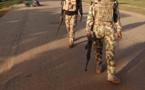 Nigeria : un dirigeant de l'État islamique en Afrique de l'Ouest est mort (armée)