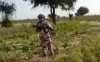 Prévention des conflits au Tchad : une mission du CMT intervient dans un champ au Batha