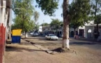 Tchad. La paix à travers le développement (débat)