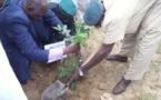 Tchad : La société MIAN environnement veut-elle s'attaquer à l'impossible ?