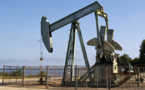 Tchad : Du pétrole s'est déversé à Badila