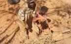 Sénégal : « L'Etat doit mettre fin à l'anarchie qui prévaut dans le secteur de l'extraction de l'or »