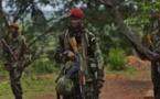 RCA : La Séléka s'insurge contre les rumeurs de nomination d'un Premier ministre