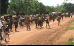 Centrafrique: Zemio, hundreds of women stage topless protest