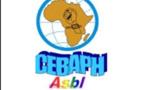 66ème anniversaire de la DUDH, La réaction du CEBAPH: Quelle place pour les droits de l'Homme en Afrique ?