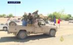 Cameroun: Voir le premier reportage sur l'arrivée de l'armée tchadienne
