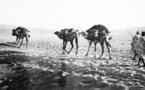 La mystérieuse route caravanière de Gabès, en Tunisie à Nguigmi, au Tchad