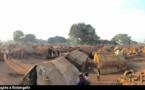 Centrafrique: Batangafo, stuck in an endless crisis