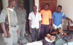 Cameroun : trois trafiquants interpellés à Ebolowa
