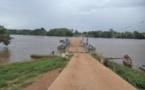 Cameroun : Environnement et sécurité, les risques de la transhumance
