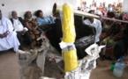 Cameroun:Le vieux trône  de plus de 60 ans vendu à 10 millions Fcfa