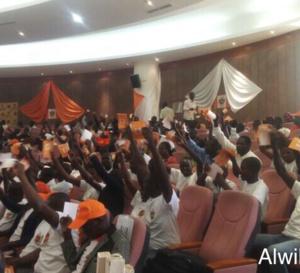 Tchad : L'UNDR fait une démonstration de force pour ses 25 ans