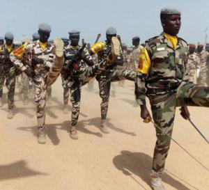 """Développement : """"les militaires sont là pour travailler, pas seulement pour se battre"""", ministre de la Défense"""