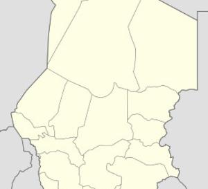 Tchad : octroi de parcelles à des organisations des femmes rurales dans le Logone oriental