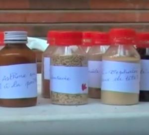 Tchad : la médecine traditionnelle mise en valeur
