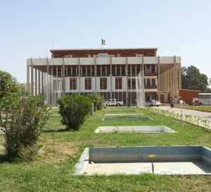 Tchad : le Gouvernement mobilise la diaspora pour renforcer l'enseignement et la santé