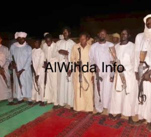 Tchad : les civils déposent leurs armes à l'Est (vidéo)