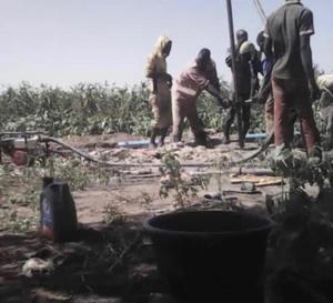 Tchad : 15 forages d'irrigation en faveur des jeunes et femmes au Lac