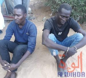 Tchad : deux hommes arrêtés après le meurtre d'une femme de 64 ans
