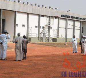 Tchad : l'abattoir moderne de Moundou, une aubaine économique