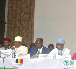 """Tchad : dégradation effrénée de l'environnement, une """"lutte sans merci"""" (Kalzeube Payimi)"""
