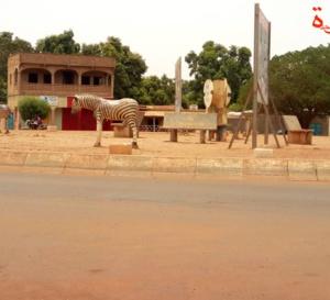 Tchad : naissance d'un enfant avec un seul bras