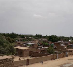 Tchad : soupçonnée d'avoir un téléphone et une grossesse, une fille tabassée à mort à l'Est