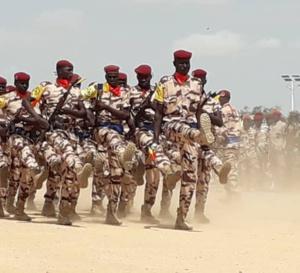 Tchad : plus de 150 officiers et sous-officiers promus à des grades supérieurs