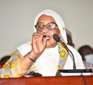 """Tchad : poste de vice-président, """"on s'achemine vers le mode de désignation"""""""