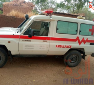 Tchad : une maladie à symptôme paludique fait des victimes au Barh Garada