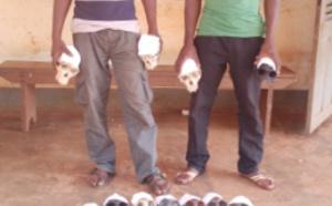 Cameroun /Abong-Mbang: deux trafiquants fauniques sous les verrous