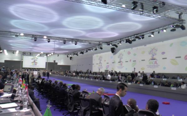 Coopération : Les pays Non-alignés favorables à la réforme du Système des Nations Unies