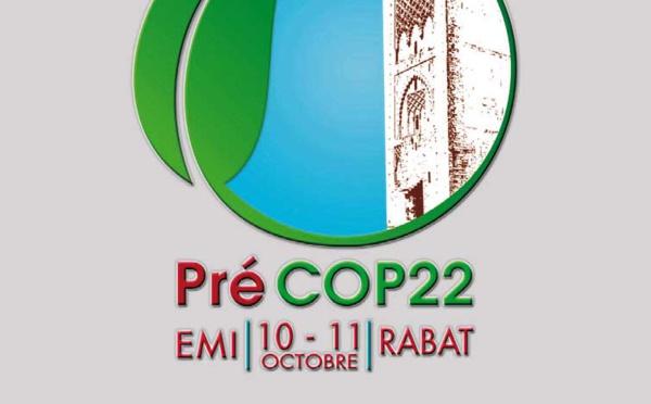 Le Maroc pleinement engagé dans la lutte contre les changements climatiques : la région Rabat-Salé-Kénitra organise sa pré-COP.