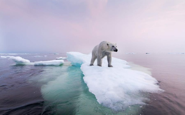 Les gouvernements doivent s'unir derrière la science pour éviter le dérèglement climatique