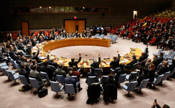 Conseil de sécurité de l'ONU : Djibouti veut siéger en tant que membre non permanent