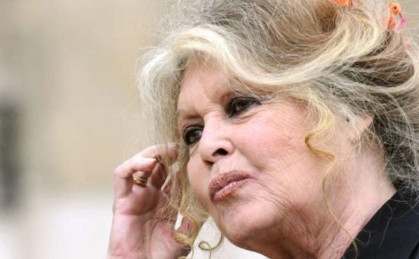 Tchad : Brigitte Bardot rend hommage au président Idriss Deby
