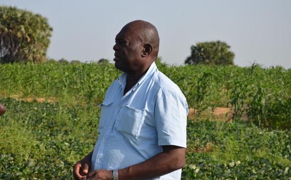 Tchad : L'Ancien PM Dadnaji veut reprendre l'idée de Mahamat Zene Bada pour l'Agriculture