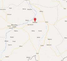 Tchad : A Bébédjia, les indicateurs sur la santé passés au crible